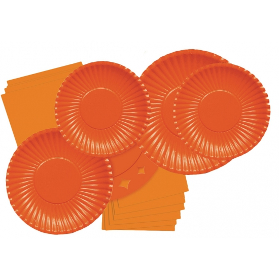 Feestbordjes oranje 10 stuks 23 cm