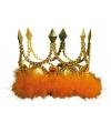 Gouden kroon met oranje veren