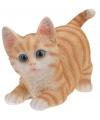 Kruipende katten beeldje oranje 18 cm