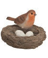 Vogelnest met vogel en eitjes oranje