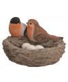 Vogelnest met vogels en eitjes oranje