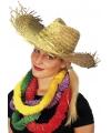Party hoed van stro