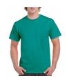 Voordelig jade groen T-shirt voor volwassenen