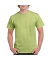 Voordelig pistache groen T-shirt voor volwassenen